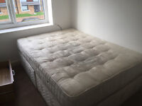 A very Nice and clean Double room and a single room to let