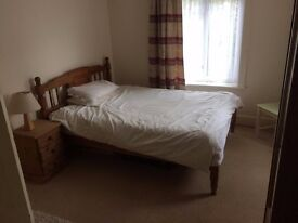 LARGE DOUBLE ROOM WITH PRIVATE BATHROOM IN QUIET FLATSHARE