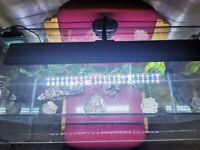90l aquarium with filter, LED light, heater, sand, decorations