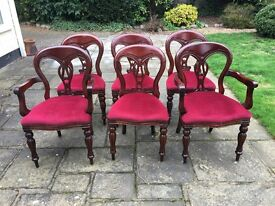 4 balloon back chairs and 2 carvers