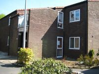 Runcorn - one bed flat, ground floor, over 50s, available immediately