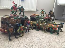 Teenage turtles with two tanks
