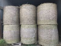 4x4ft Net Wrapped Round Hay Bales