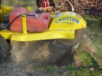 Stump grinding/removal service - Any size stump, narrow access, Competitive Rates, Fully insured