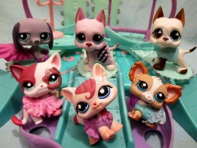 Littlest Pet Shop Lot 3 Random Custom Clothes Skirt Dress Cat Dog and Gift Bag