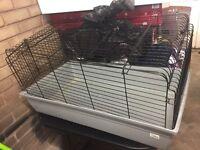 Indoor plastic rabbit cage
