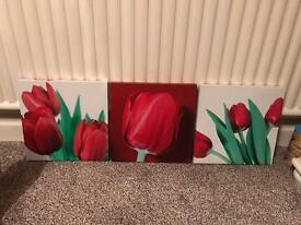 Canvas pictures x 3