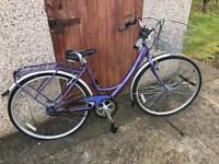 Lady's Shopper Bike