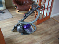 Dyson DC39 Animal including extra heavyduty dog hair remover and also dog groomer