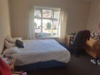 Huge double room in friendly mature student house share
