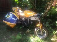 mini moto bike Camel 50cc