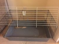 Guinea Pig/Small rabbit- Used plastic and wired cage, suitable for guinea pigs or small rabbits