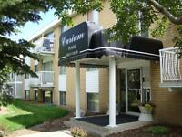 1 Bdrm Suite Avail Immediately Convenient Central Bldg ~ Curium