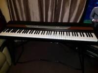 Korg SP250 Keyboard