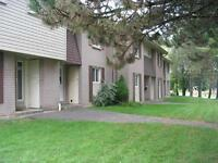 STUDENT TOWN HOMES * 8 or 12 month lease terms * From $425/mth
