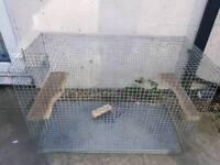Chinchilla/degu cage