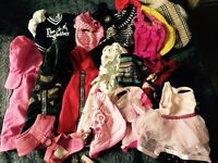 Dog clothes chihuahua XS, coats and jumpers, puppia harness