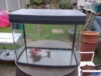 40L fish tank love fish panorama 40
