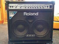 Roland D-Bass 210 - 400w Bass Amplifier