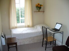Single bedroom in a tidy flat. New Church Road, 15 min to Language Schools