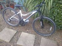 saracen tufftrak ladies mountain bike
