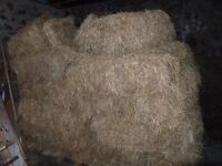 Hay for sale, antrim area