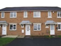 3 Bedroom Terraced To Let £795 PCM or £200 per week