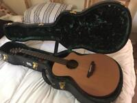 Breedlove Atlas Solo C35/Cme with hard case
