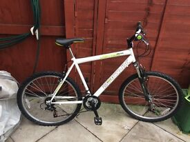Mens White Mountain Bike