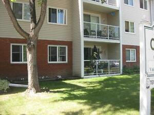 *INCENTIVES*Bachelor w/ Patio in Spotless Central Adult Bldg ~33 Edmonton Edmonton Area image 2