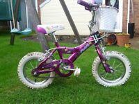 Girls GIANT little pudding bike