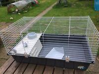 Guinea Pig/rabbit indoor hutch/cage
