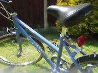 Raleigh Calypso bicycle for older girls