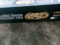 Bearded dragon set up