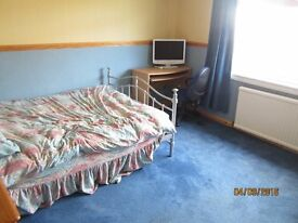 room to let in spacious bungalow