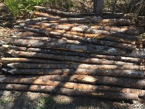 Rejected fence posts