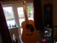 westville accoustic guitar