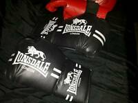 pair of.boxing / training gloves