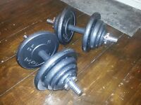 2 x 20kg dumbells, cast iron