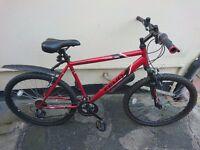 Apollo Feud Men's/Boy's Mountain Bike
