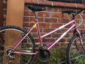Dunlop bike ladies mountain pink girls trek hybrid hard rock Raleigh 12 speed kona specialized