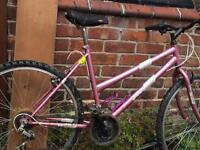Dunlop bike ladies mountain pink girls trek hybrid hard rock Raleigh 12 speed kona specialized