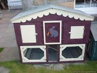 rabbit/guineau pig hutch deluxe