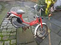 Honda camino dx