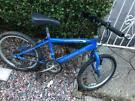 20 in bike