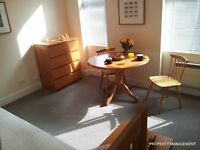 Sunny Single Room New Decoration Zone 2