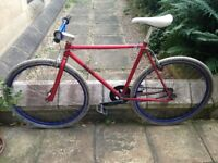 21 inch singlespeed bike in great condition