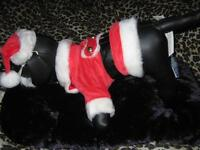 New Santa Suits-Great For Halloween