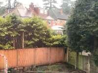 FREE x4 large tree stumps - firewood?
