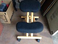 Ergonomic posture back health chair
